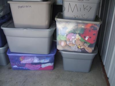 New Bern  Self Storage Auction #104328 - Image 2 books,boxes / totes,clothing,holiday decor,toys / baby items