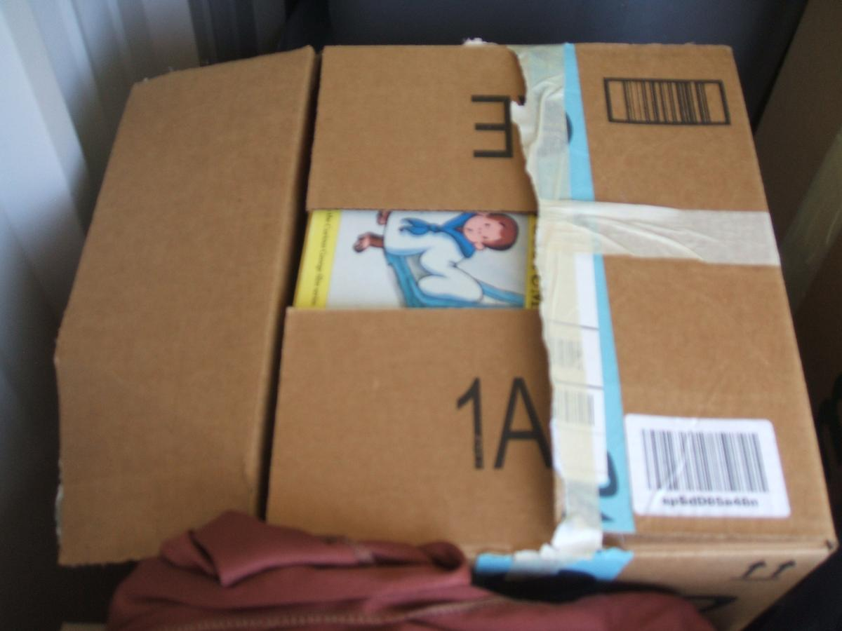 Self Storage Auction #104328 - Image 5 books,boxes / totes,clothing,holiday decor,toys / baby items